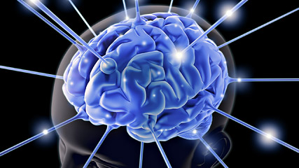 Neuroplasticity in training